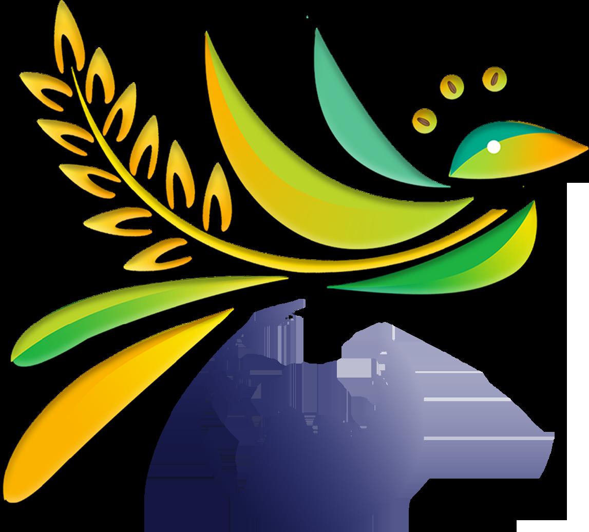 SSDCloud Logo